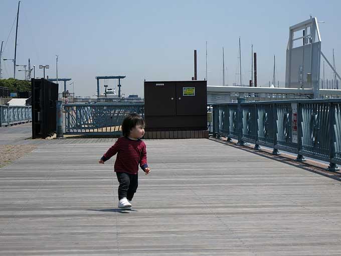 新西宮ヨットハーバーのマリーナの遊歩道