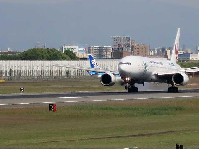 伊丹スカイパーク・飛行機の着陸