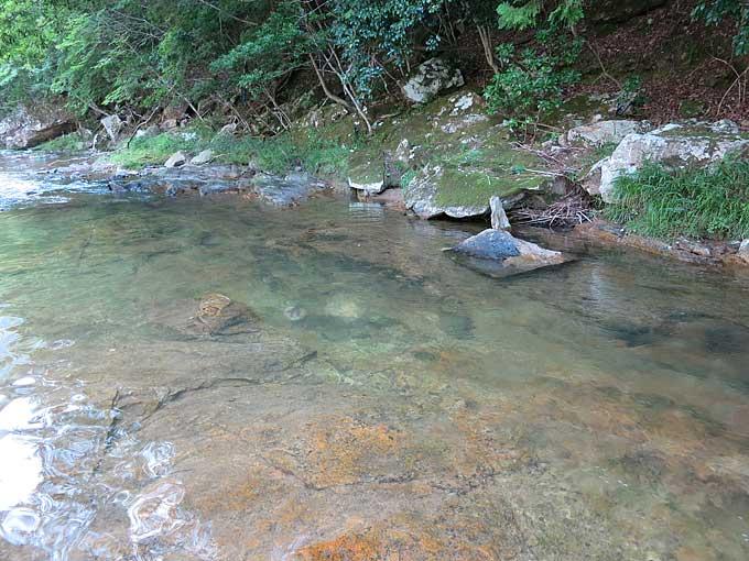 キャンプ場の川・緩やかな流れ