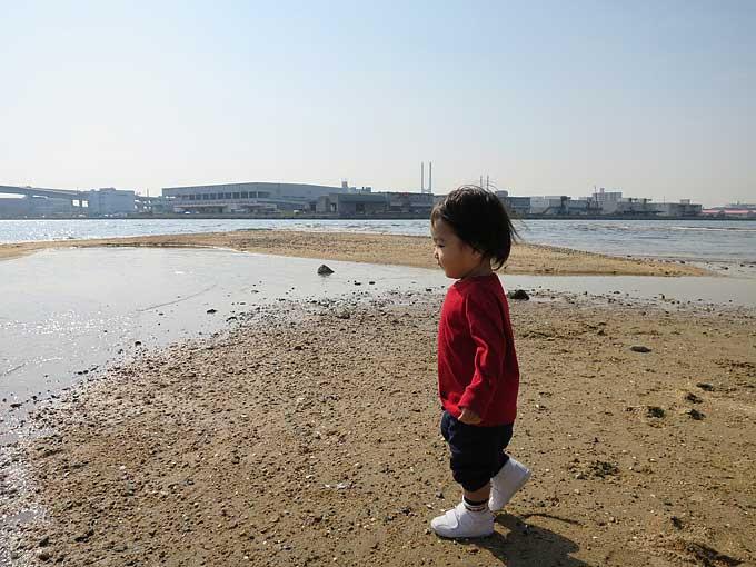 芦屋川河口に到着