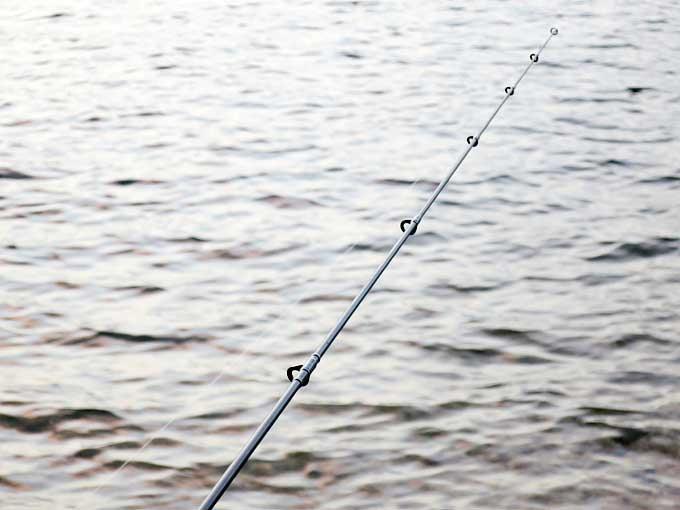 シーバス釣り「アタリ」の感触と種類・前編