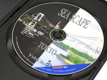 都市型河川シーバスの参考にSEA SCAPE TOKYO