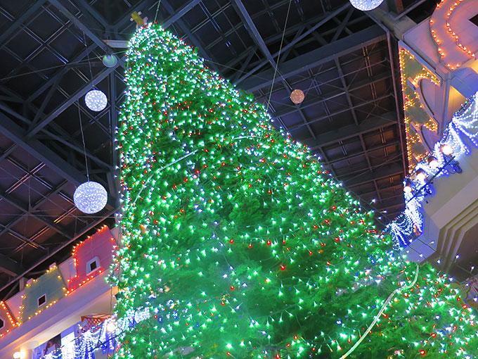クリスマスツリーに別れを告げ