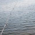 シーバスを釣る為に重要な要素!流れについて!!