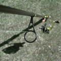 釣りに行ってみましたが…