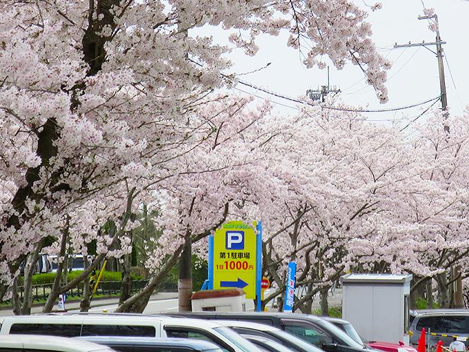 東条湖おもちゃ王国の駐車場