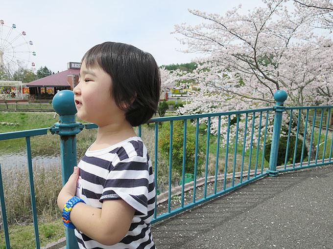 桜と湖の前で記念写真!!