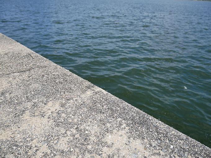 西宮の護岸