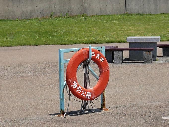 等間隔で浮き輪が設置されています