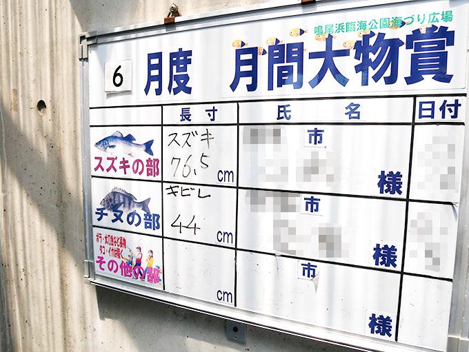 鳴尾浜臨海公園海づり広場・大物の釣果