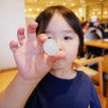 鈴鹿サーキットホテルに宿泊!レストランと設備について!!