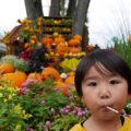 長島リゾートを満喫!ながしまスパーランドのハロウィン!!