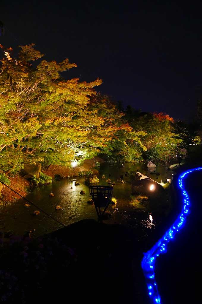 日本庭園風のライトアップ