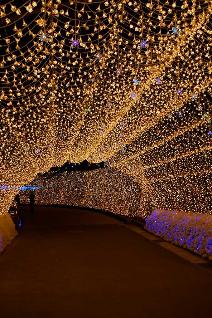 光のトンネル出口