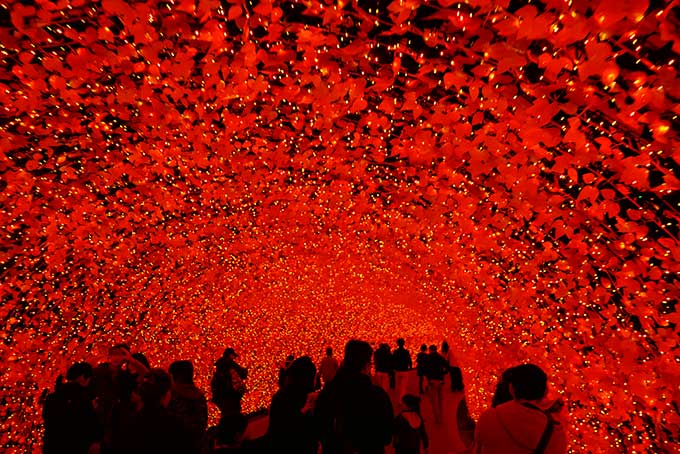 紅葉の赤が綺麗