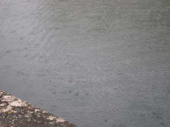 大雨後や降雨中のルアー釣りは釣れるのか