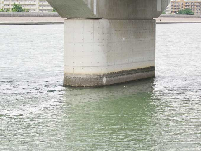 シーバスの釣り方・橋脚のヨレと周辺を探る