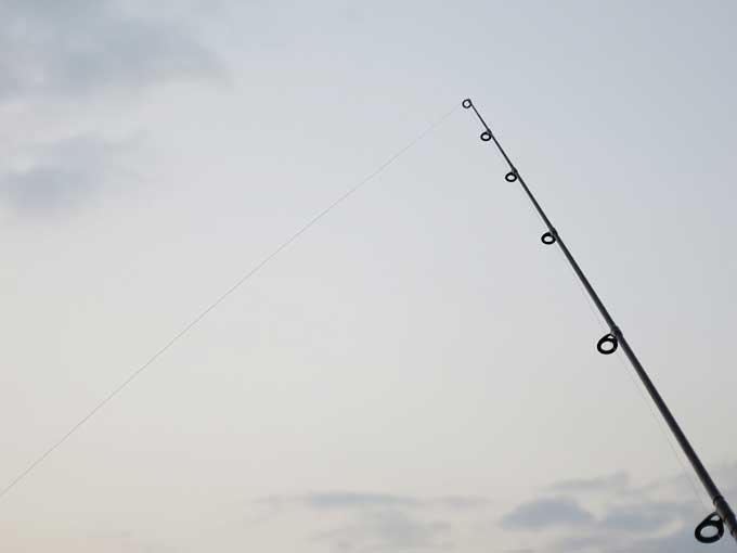 シーバス釣り「アタリ」の感触と種類・後編