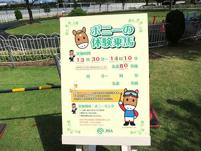 阪神競馬場のポニー乗馬案内