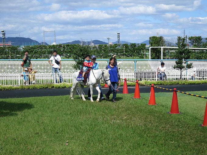 阪神競馬場のポニー乗馬体験中
