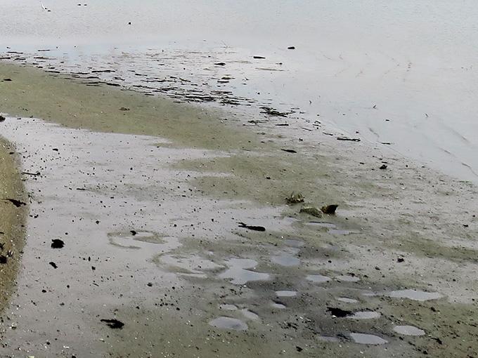 潮汐や干満について