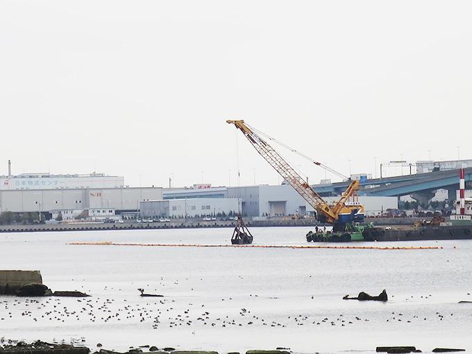 甲子園浜の干潟再生工事