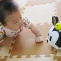 ハイハイ期の乳児が夢中になる玩具をプレゼント!
