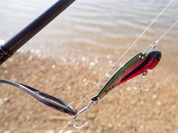 期待を持って釣りに出掛けるも…