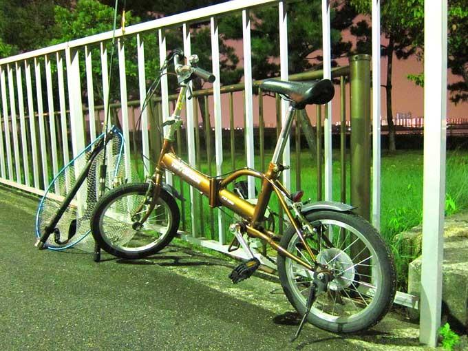 自転車保険を比較検討!