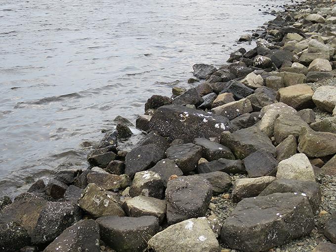 シーバスが釣れる穴場ポイントの探し方